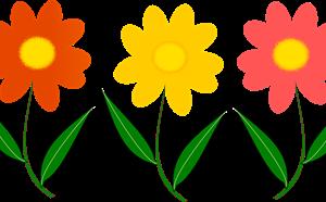 Spring Break - article thumnail image
